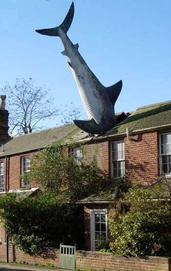 Shark In Roof, The Headington Shark