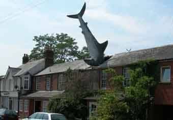 Side shot 2: Shark In Roof, The Headington Shark